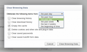 Delete private files in Google Chrome within a certain time period